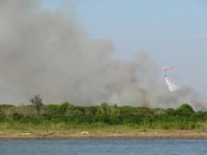 Śmigłowiec w czasie gaszenia pożaru lasu
